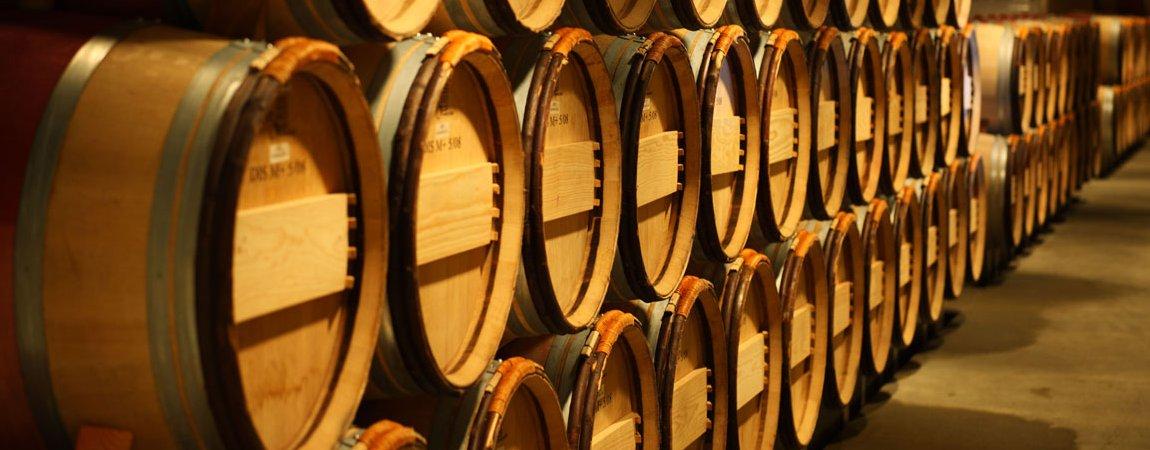 olivino-wine-cellar.jpg